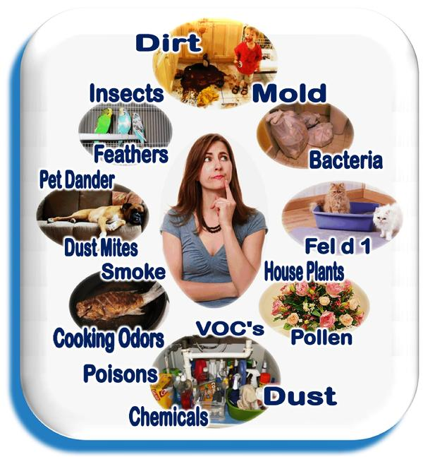 Florida Indoor Air Qualirty Solutions IAQS